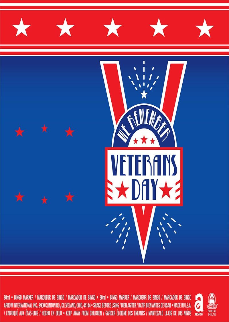 We Remember Veterans Day / Stars